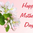 Apple blossom branch with Mother's Day greetings in English — Stock Photo #64622553