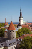 Old Town Tallinn, Estonia — Stock Photo