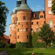 Gripsholm Castle — Stock Photo #57018463