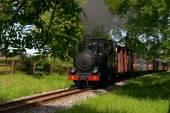 Steam train, Museum — Stock Photo