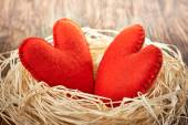 Valentines Day. Handmade Hearts Couple in nest. Love concept. — Stock Photo