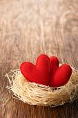 Valentines Day. Handmade Hearts Couple in nest. Love concept — Stockfoto