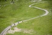 Mountainbiker Riding Sport Freeride — Stock Photo
