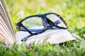 An open book with glasses on a meadow — Stock Photo