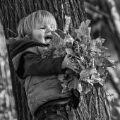 Boy playing with leaves in a park — Foto de Stock