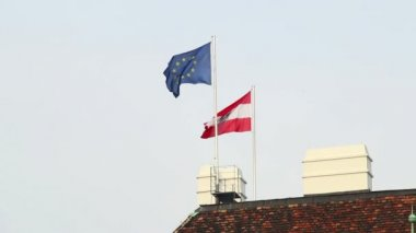 Flag of Austria and EU — Stock Video