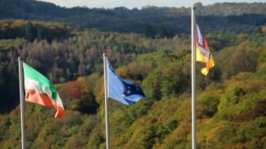 Flags of Germany and European Union — Stock Video