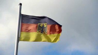 Bandeira da alemanha — Vídeo Stock