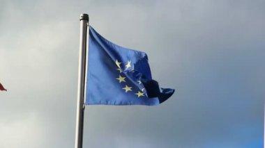 Flag of European Union — Stock Video
