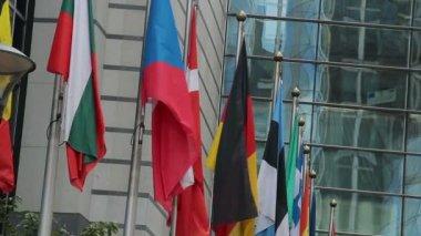 European Union flags — Stock Video