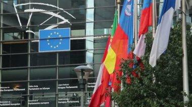 Bandeiras da união europeia — Vídeo Stock