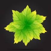 The leaves are green circle on a black background vector — Vector de stock