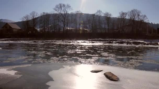 Flotante de hielo. — Vídeo de stock