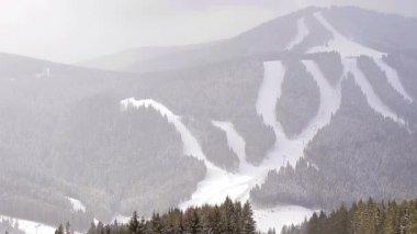 Ski trails in the wood. — Vídeo de Stock