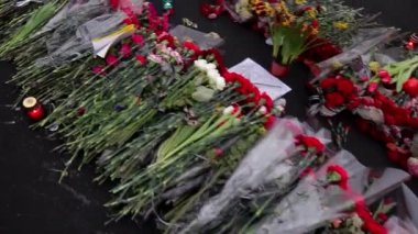 Walk of Fame in flowers. — Stock Video