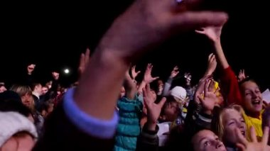 Crowd dancing at the concert. — Stock Video