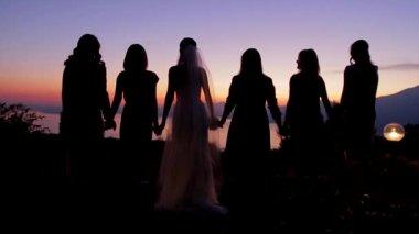 Bride with bridesmaids. — Stock Video