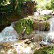 Rainforest gardens, right beside a stunning waterfall in Cayo Levantado, Dominican Republic. — Stock Photo #72833869