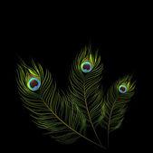 Vector peacock design on black background.vector illustration — Stock Vector