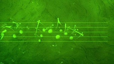 Animated background with musical notes, Music notes flowing, flying stream of Music Notes — Stockvideo