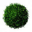 Planet earth made of leaves. Eco globe. Ball of green leaves isolated on white. — Stock Photo #61647299