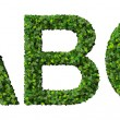 A B C alphabet letters made from green leaves isolated on white background. — Stock Photo #66133891