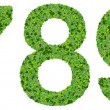 7 8 9 digits, numbers made from green leaves isolated on white background. — Stock Photo #66133941
