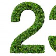 1 2 3 digits, numbers made from green leaves isolated on white background. — Stock Photo #66133993