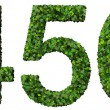 4 5 6 digits, numbers made from green leaves isolated on white background. — Stock Photo #66134017