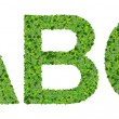 A B C alphabet letters made from green leaves isolated on white background. — Stock Photo #66134075