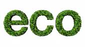 Word eco made from green leaves isolated on white background. — Stock Photo