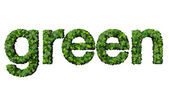 Word green made from green leaves isolated on white background. — Stock Photo
