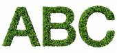 A B C alphabet letters made from green leaves isolated on white background. — Stockfoto