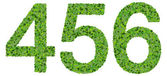 4 5 6 digits, numbers made from green leaves isolated on white background. — Stock Photo