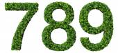 7 8 9 digits, numbers made from green leaves isolated on white background. — Foto de Stock