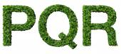 P Q R alphabet letters made from green leaves isolated on white background. — Stock Photo