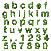 Alphabet with numbers made from green leaves isolated on white background. 3D render. — Stock Photo