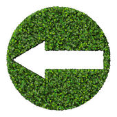 Arrow made from green leaves. — Stock Photo