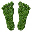 Feet made from green leaves isolated on white background. 3D render. — Stock Photo #69300677