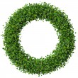Ring made from green leaves isolated on white background. 3d render. — Stock Photo #69304551