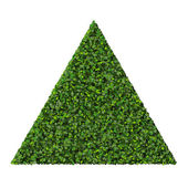 Triangle made from green leaves isolated on white background. 3D render. — Stock Photo