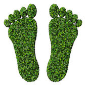 Feet made from green leaves isolated on white background. 3D render. — Stock Photo