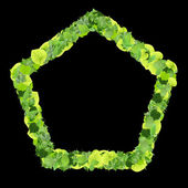 Pentagon made from green leaves isolated on white background. 3D render. — Stock Photo