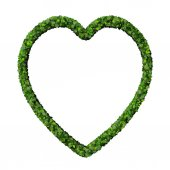 Heart made from green leaves. — Stock Photo