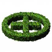 Pharmacy Plus with ring, sign made from green leaves isolated on black background. 3D render. — Stock Photo