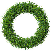 Ring made from green leaves isolated on white background. 3d render. — Stock Photo