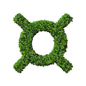 Currency symbol made from green leaves isolated on white background. 3d render. — Stock Photo