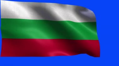 Flag of Bosnia and Herzegovina - loop — Stock Video