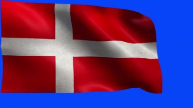 Kingdom of Denmark, Danish Flags - loop — Stock Video