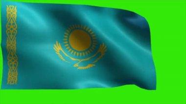 Republic of Kazakhstan, Flag of Kazakhstan — Stock Video